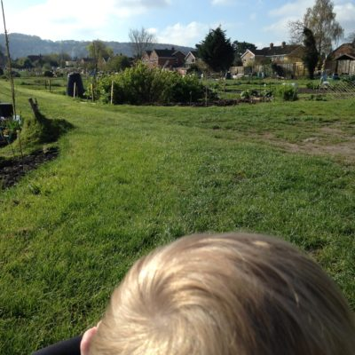Tales of growth- Why allotment?